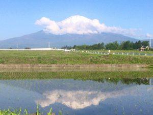 富士山170519